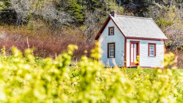 buying land for a tiny house